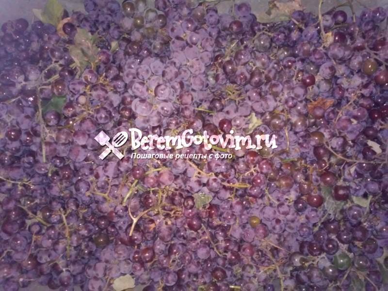 ингредиенты-для-сока-из-винограда-лидия
