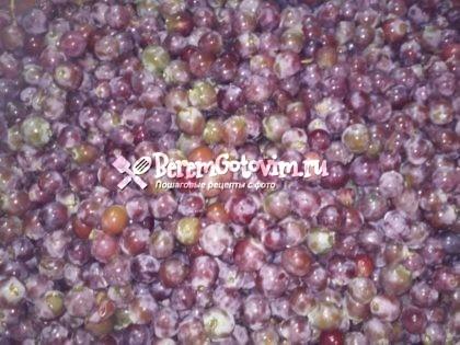 отделяем-виноград-от-кисточек