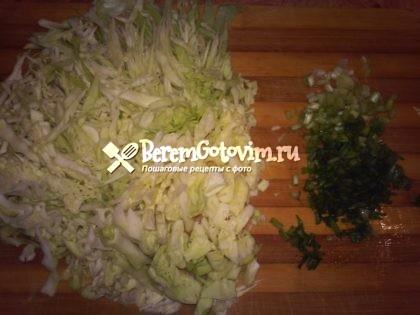 шинкуем-капусту-зелень