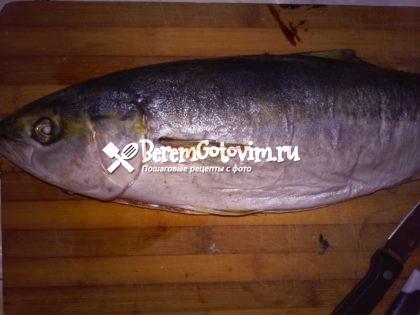 выпотрошим-рыбу