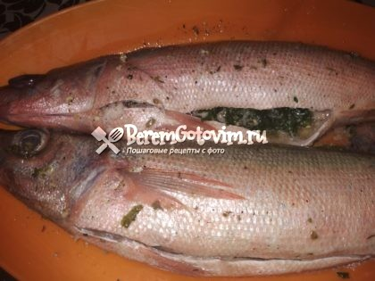 фаршируем-рыбу-зеленью