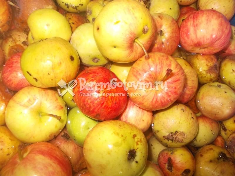 ингредиенты-для-яблочного-сока-в-соковарке