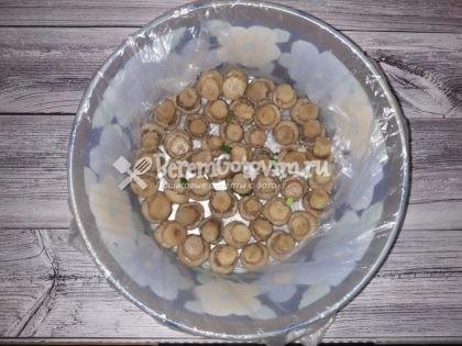 выкладываем-грибы